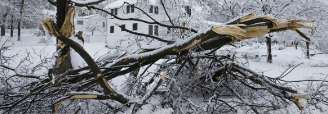 Winter storms clean up